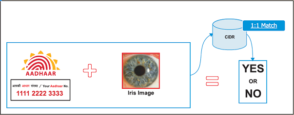Aadhaar Iris Authentication