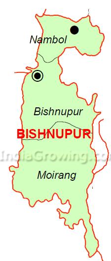 Bishnupur District Subdivisions Map