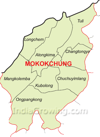 Mokokchung District Map
