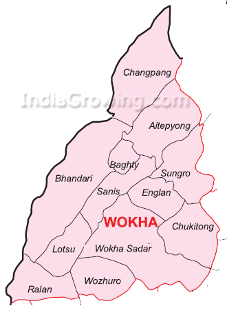 Wokha District Subdivisions Map