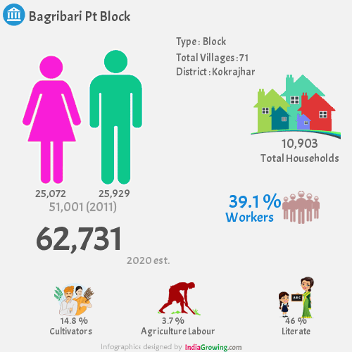 Bagribari Pt Demographics, Kokrajhar district