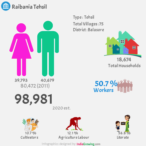 Raibania Demographics, Balasore district