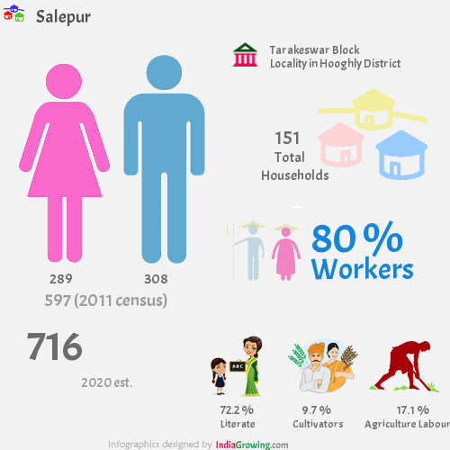 Salepur population 2019