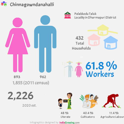 Chinnagowndanahalli population 2019, households, workers, literate and census in Palakkodu Taluk, Dharmapuri district