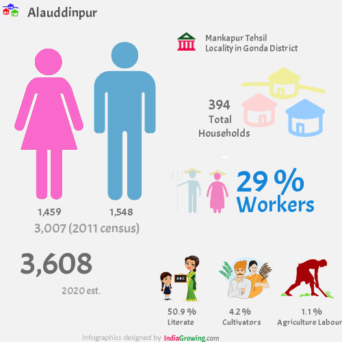 Alauddinpur population 2019, households, workers, literate and census in Mankapur Tehsil, Gonda district