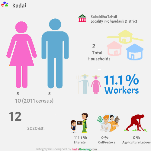 Kodai population 2019/2020