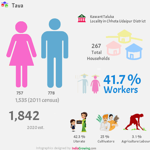 Tava population 2019, households, workers, literate and census in Kawant Taluka, Chhota Udaipur district