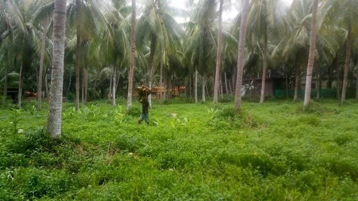 East Godav</p> <h1>East Godavari District Population</h1><p><div class=