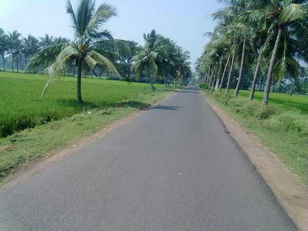 Penumanchili village picture